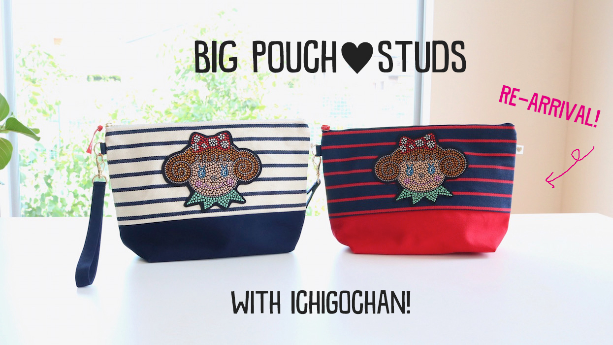 20181026bagpouch